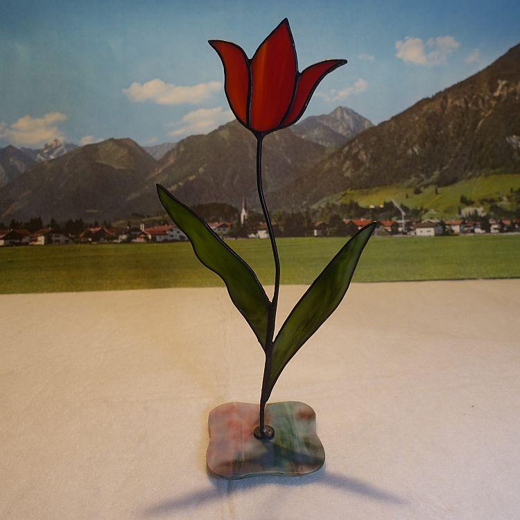 Tulpe stehend Rot