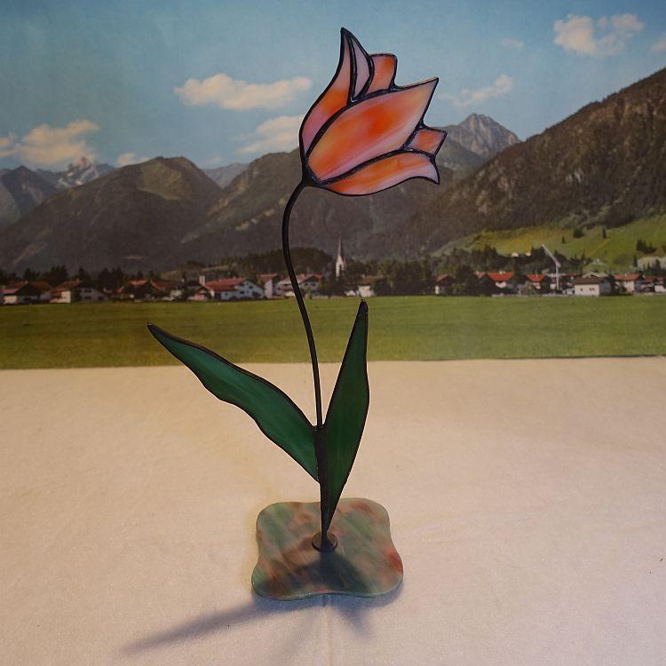 Tulpe stehend Orange