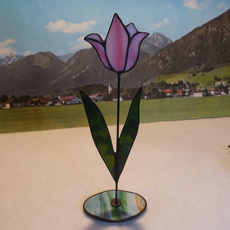 Tulpe stehend Rosa